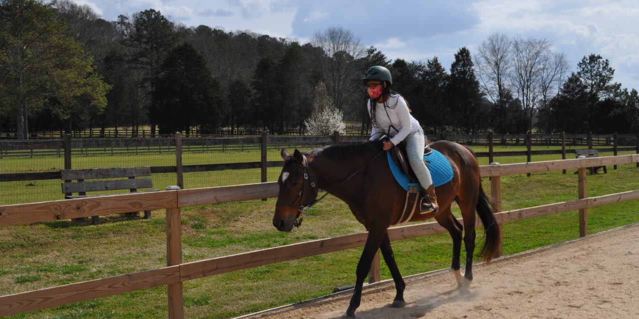 The Red Barn: What Horses Can Teach Us